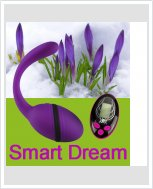 Виброяйцо Smart Dream с пультом LRS